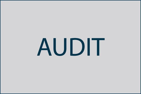 Audit of Rocky Mountain Human Services