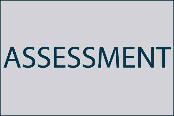 Software Asset Management Assessment