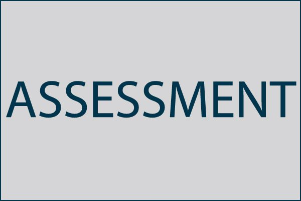 Information Systems Assessment